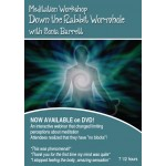 Meditation Webinar - Down the rabbit wormhole
